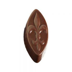 Bleuet-chocolat